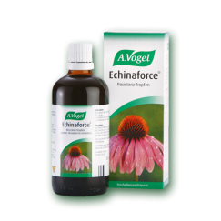 Echinaforce 50ml